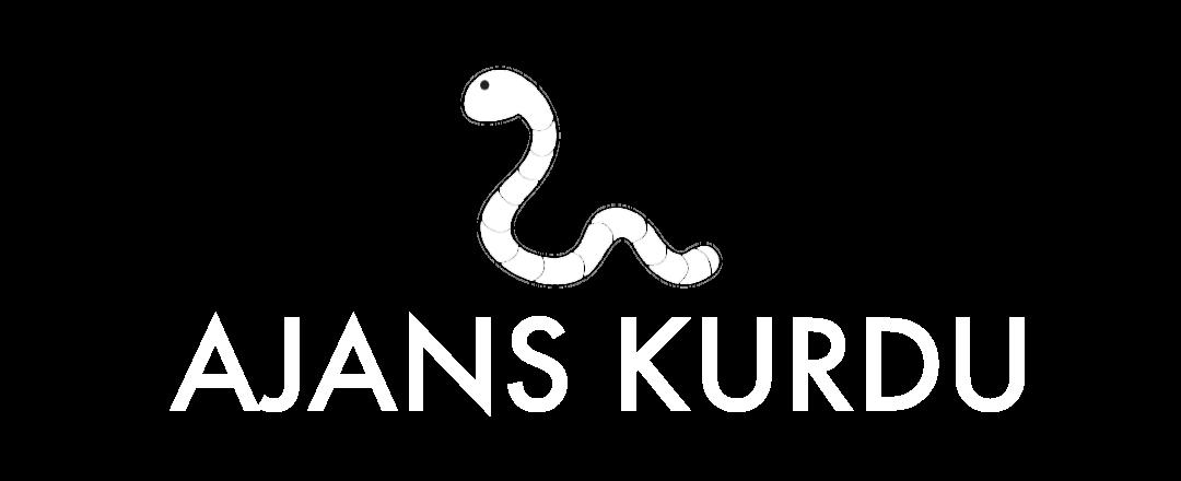 Ajans Kurdu